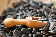 Sunflower seeds and spoon Royalty Free Stock Photo