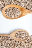 Sunflower seeds and spoon on a white background. Stock Images