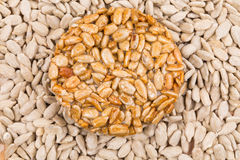 Sunflower seeds in sugar syrup. Stock Images