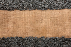 Sunflower seeds  were lying on sackcloth Royalty Free Stock Photo