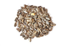 Sunflower seeds  on white background Royalty Free Stock Photography
