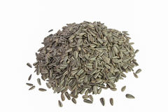 Sunflower seeds. Stock Photography