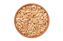 Sunflower seeds. On a white background Stock Photos