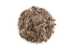Sunflower Seeds In White Bowl II Royalty Free Stock Images