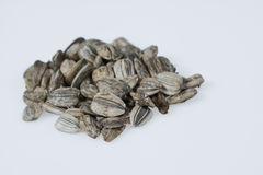 Sunflower seeds  on white. Mammouth sunflower seeds piled on  white background Royalty Free Stock Photos