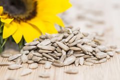 Sunflower with Seeds on wood Royalty Free Stock Photography
