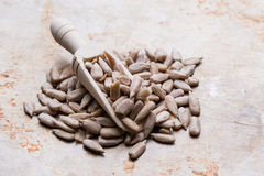 Sunflower seeds on wooden scoop Stock Photos