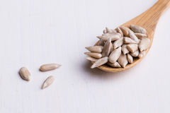 Sunflower seeds on wooden spoon Stock Photography