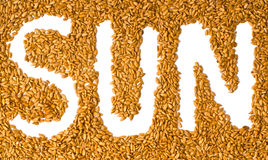 Sunflower seeds with written word sun Royalty Free Stock Photo
