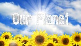 Sunflower Sky Stock Photography