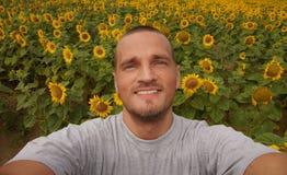 Sunflower snapshot Stock Photo
