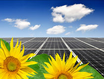 Sunflower and solar panel Royalty Free Stock Images