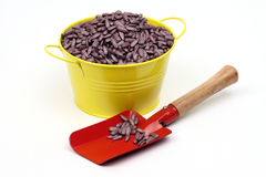 Sunflower sowing seed. Colored sunflower sowing seed in yellow bowl close up Royalty Free Stock Photography