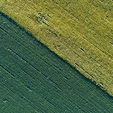 Sunflower and soybean fields. Abstract image of farmlands. Top view of sunflower and soybean fields Royalty Free Stock Images