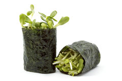 Sunflower sprouts wrapped in sushi nori Stock Images