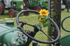 Sunflower on the steering wheel of an tractor royalty free stock photos