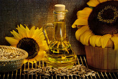 Sunflower still life Royalty Free Stock Photo