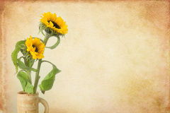 Sunflower still life on painterly backdrop Royalty Free Stock Photo