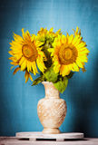 Sunflower still life Stock Images