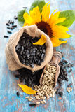 Sunflower and sunflower seed. Royalty Free Stock Photography