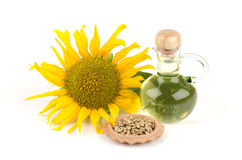 Sunflower, sunflower seeds and sunflower oil (Helianthus annuus L.). Stock Images