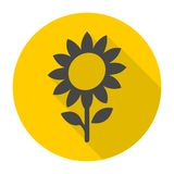 Sunflower symbol icon Royalty Free Stock Photography