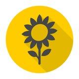 Sunflower symbol icon Royalty Free Stock Photography