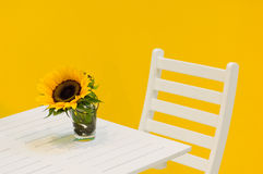 Sunflower on table Stock Image