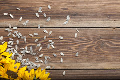 Sunflower on table. Sunflowers and seed on a wooden table Stock Photo