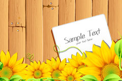 Sunflower with tag Royalty Free Stock Photo