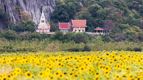 Sunflower temple Royalty Free Stock Photos