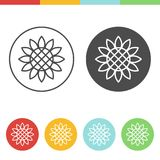 Sunflower vector icons. Vector set of sunflower icons in thin line style Stock Photo