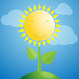 Sunflower, vector illustration Royalty Free Stock Photo