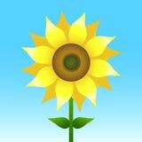 Sunflower vector illustration Royalty Free Stock Photos