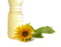 Sunflower and vegetable Royalty Free Stock Photo