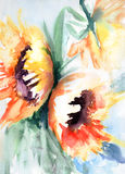 Sunflower in watercolor Stock Photo