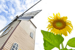 Sunflower with wind turbine Royalty Free Stock Image