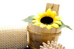 Sunflower in the wood receptacle Stock Photography
