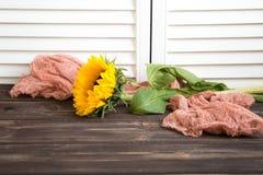 Sunflower on wooden background. One sunflower and runner on wooden background Royalty Free Stock Photo