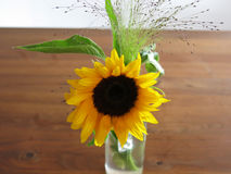 Sunflower on wooden table Royalty Free Stock Photography