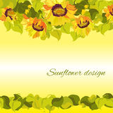 Sunflower yellow border horisontal gesign background. Text place. Yellow orange sunflower and leaves border horisontal design background. Text place Royalty Free Stock Photography