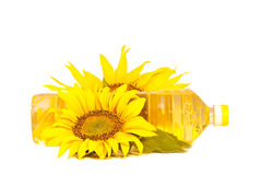 Sunflowers атв oil. Sunflowers and oil  isolated on white background Royalty Free Stock Photography