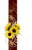 Sunflowers. Decoration of Sunflowers on an ornamental ribbon Stock Images