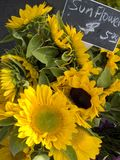 Sunflowers. For sale at a country market Royalty Free Stock Image