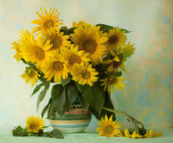 Sunflowers. Composition from sunflowers in a ceramic vase on a light green background Royalty Free Stock Image