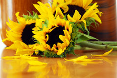 Sunflowers. Closeup of three beautiful sunflowers over a table stock photos