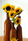 Sunflowers. Closeup of three vases with sunflowers over a table royalty free stock photos