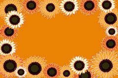 Sunflowers. On an orange background Royalty Free Stock Photos