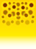 Sunflowers. Background illustration of yellow sunflowers Royalty Free Stock Photos