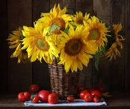 Free Sunflowers And Tomatoes. Still-life. Stock Photos - 116605813